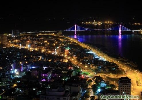 Thành phố vào ban đêm nhìn từ trên cà phê sân thượng