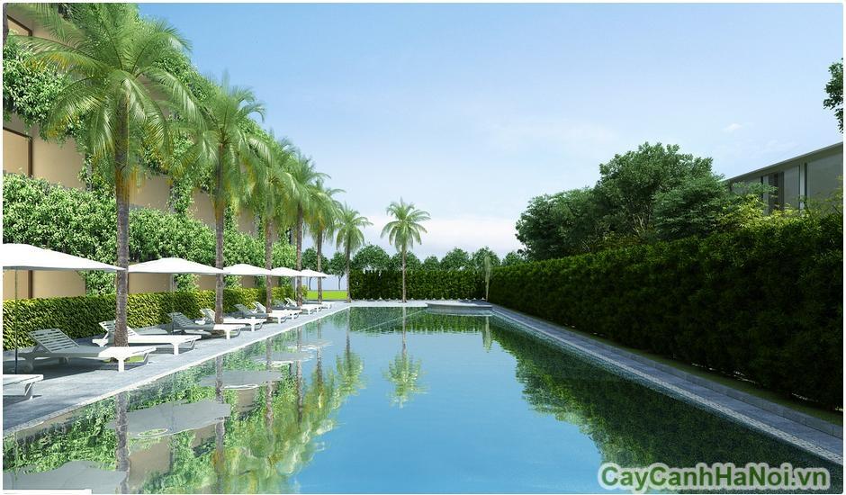 Bể bơi của Đà Nẵng Resort