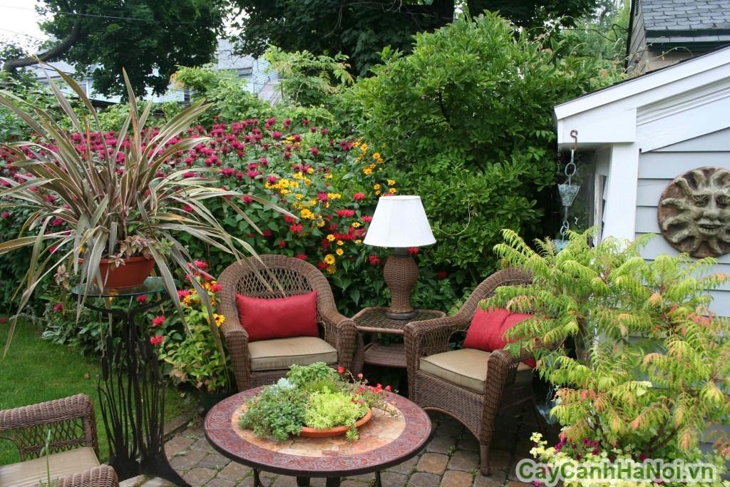 Mảnh sân vườn này là sự kết hợp trộn lẫn rất tinh tế của loại chậu hoa, chậu cây cảnh tinh tế