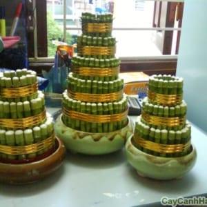 Cây Phát Lộc Tầng được làm thành nhiều tầng
