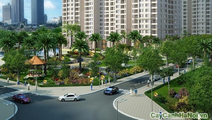 Cây xanh đô thị có ý nghĩa quan trọng trong việc bố trí và thiết kế cảnh quan
