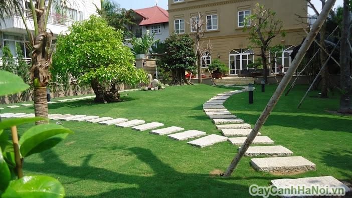 Cỏ nhân tạo mang đến không khí xanh mát cho sân vườn