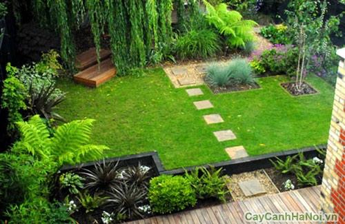 Cây xanh quanh vườn nhà chị Lan
