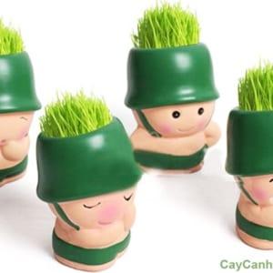Các chú lính ngộ nghĩnh với cỏ Tóc