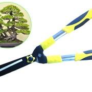 Kéo cắt tỉa cây cảnh giúp tỉa những dang cây bonsai đẹp