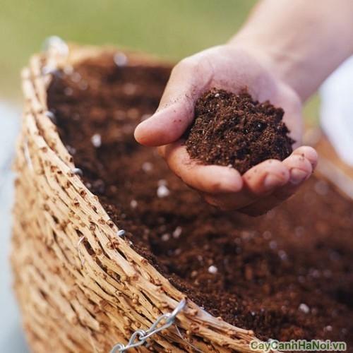 Phân vi lượng chứa các chất tốt cho cây