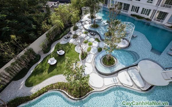 Toàn cảnh bể bơi được thiết kế hiện đại