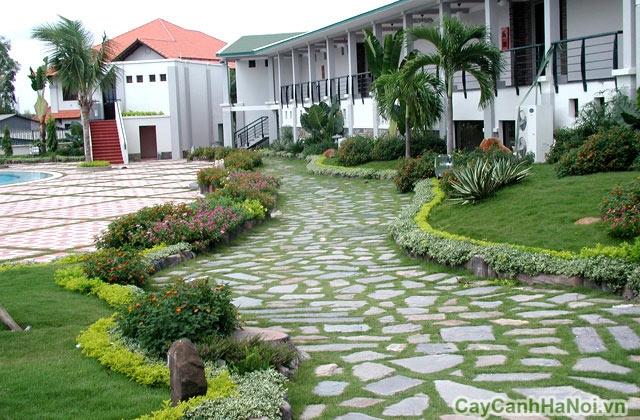 Lối đi ra khu vườn nhà Bác Mai