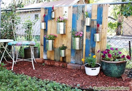 Sân vườn độc đáo với những chậu cây