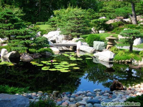 Điểm nhấn sân vườn Nhật với nước