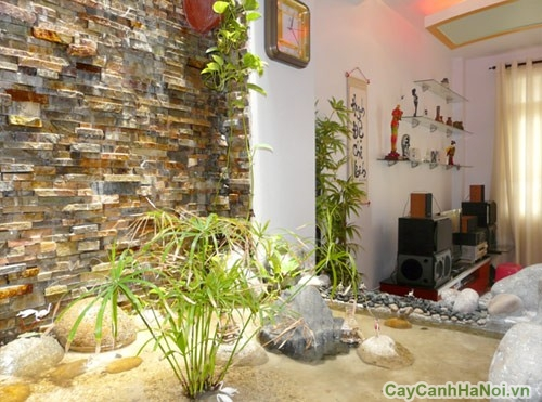 Tiểu cảnh trong nhà giúp không gian nhà bạn như được hòa mình với thiên nhiên