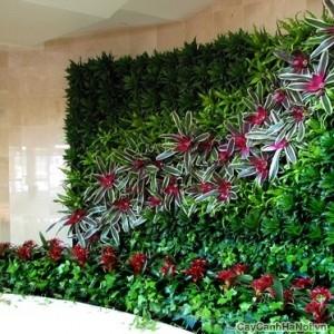 tường cây được làm uốn lượn giống cầu thang