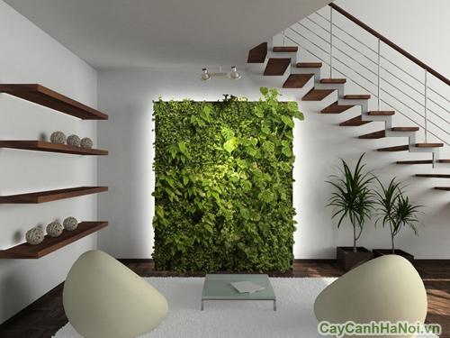 Vườn đứng giúp giải độc không khí, tạo cảnh quan đẹp