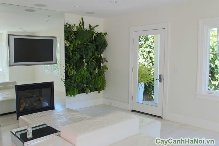 Vườn đứng giúp tiết kiệm năng lượng