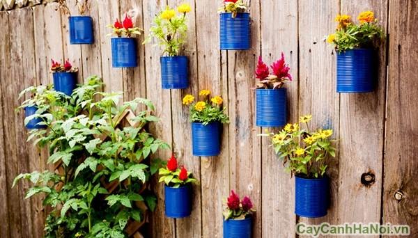 Những hộp sơn xanh tạo nên vườn treo tường