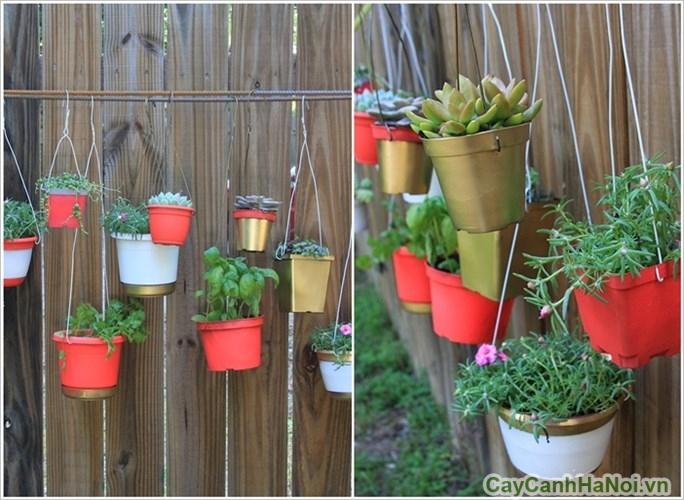 Vườn treo tường với chậu cây đa dạng màu săc