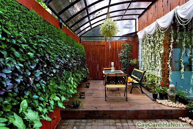 Thiết kế vườn tường cho quán cafe tăng sự gần gũi với thiên nhiên