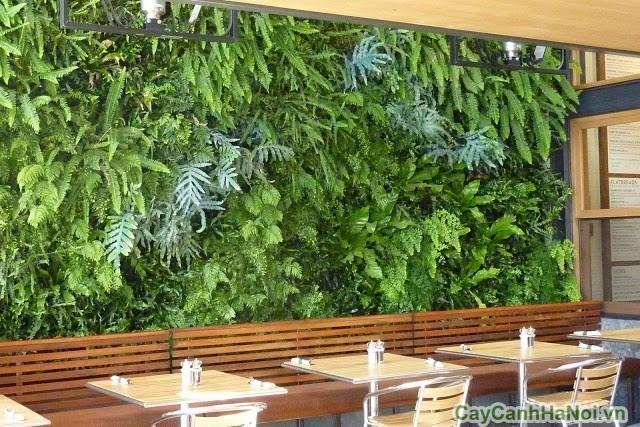 Tiểu cảnh quán cafe cũng dựa trên thiết kế vườn tường