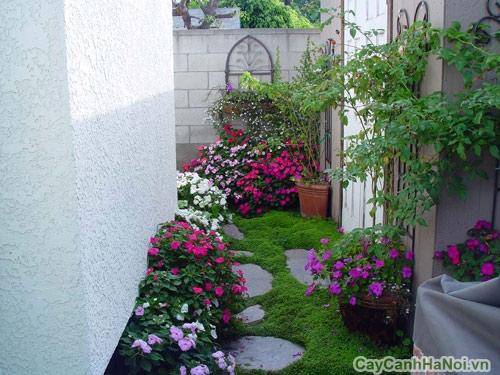 Một góc sân vườn hiện đại