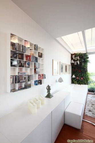 """""""Bức tường"""" xanh mướt làm cho căn hộ trở nên trẻ trung và mát mẻ hơn."""