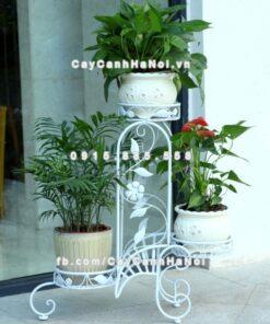 Kệ sắt châu âu ban công và hoa trong nhà