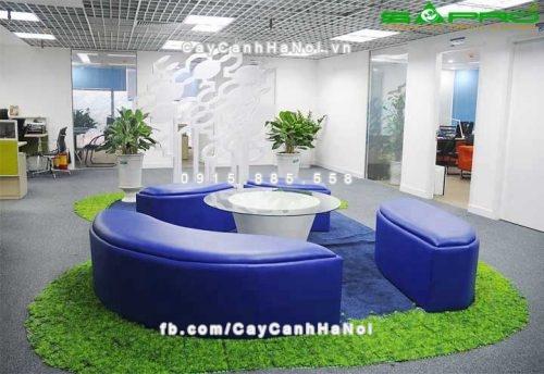 thiết kế cây xanh nhà ở mang ý nghĩa phong thủy