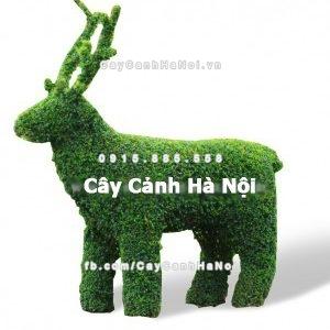 cay_gua_nghe_thuat_hinh_con_huu