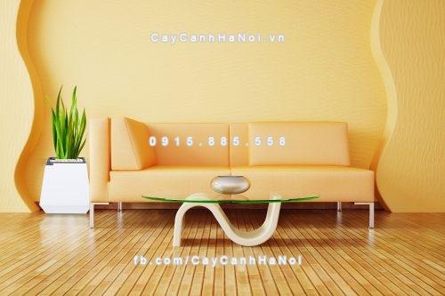 chau_go_trong_cay_thong_minh_tu_tuoi_gwl-133b-7