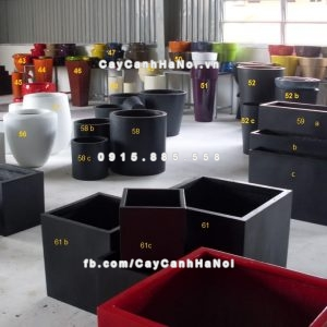 chau_composite_trong_cay_cao_cap_4_1104