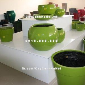 chau_composite_trong_cay_cao_cap_6_1106