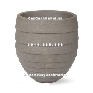 chautrong_cay_xi_mang_cao_cap_soc_ngang-m5