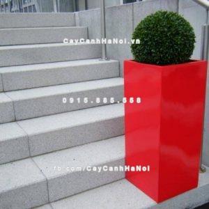 Chậu nhựa composite iPot trồng cây cao cấp ( IP-00015 )