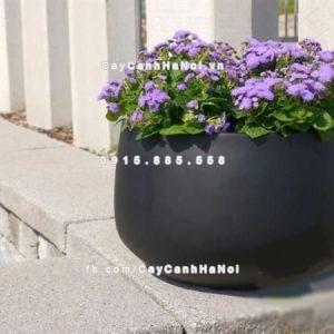 Chậu cây composite iPot cao cấp ( IP-00101)