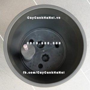 Chậu composite iPot tròn tự tưới ( HTTT-02 )