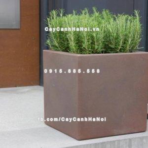 Chậu composite iPot vuông trồng cây ( IP-00085 )
