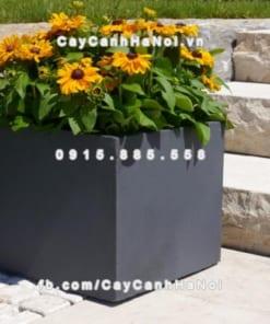 Chậu hoa composite iPot hình vuông ( IP-00068)