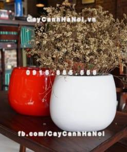 Chậu hoa composite iPot oval sang trọng ( IP-00054)