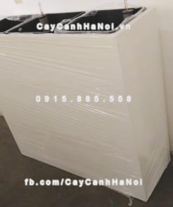 Chậu nhựa composite iPot chữ nhật ( IP-00156)