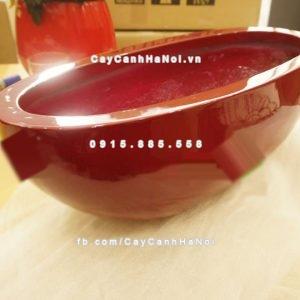 Chậu nhựa composite iPot oval ( IP-00065)