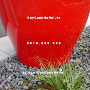 Chậu nhựa composite iPot trồng cây ( IP-00048)