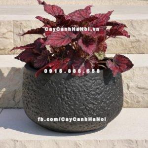 Chậu nhựa trồng cây composite iPot ( IP-00104)