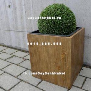 Chậu nhựa trồng cây composite iPot vuông ( IP-00088 )