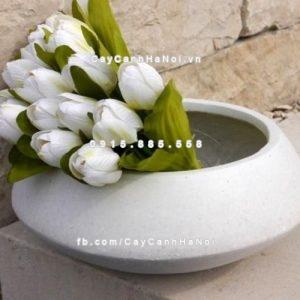 Chậu nhựa trồng hoa composite iPot ( IP-00061)