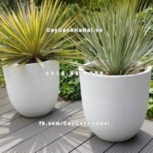 Chậu trồng cây composite iPot cao cấp ( IP-00012 )