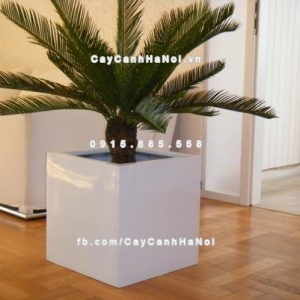 Chậu trồng cây composite iPot đẳng cấp ( IP-00091 )