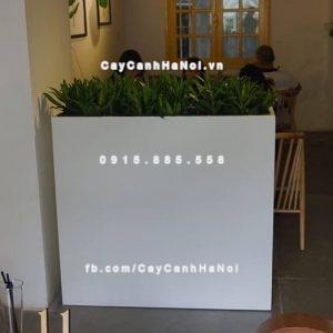 Chậu trồng cây composite iPot đẹp ( IP-00158)
