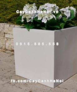 Chậu trồng cây composite iPot vuông ( IP-00084 )