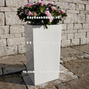 Chậu trồng cây composite iPot vuông cao ( IP-00016 )