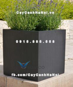 Chậu cây cảnh composite Havico Cubo| C-37