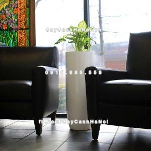 Chậu nhựa trồng cây composite Havico Zaiba| CB-343